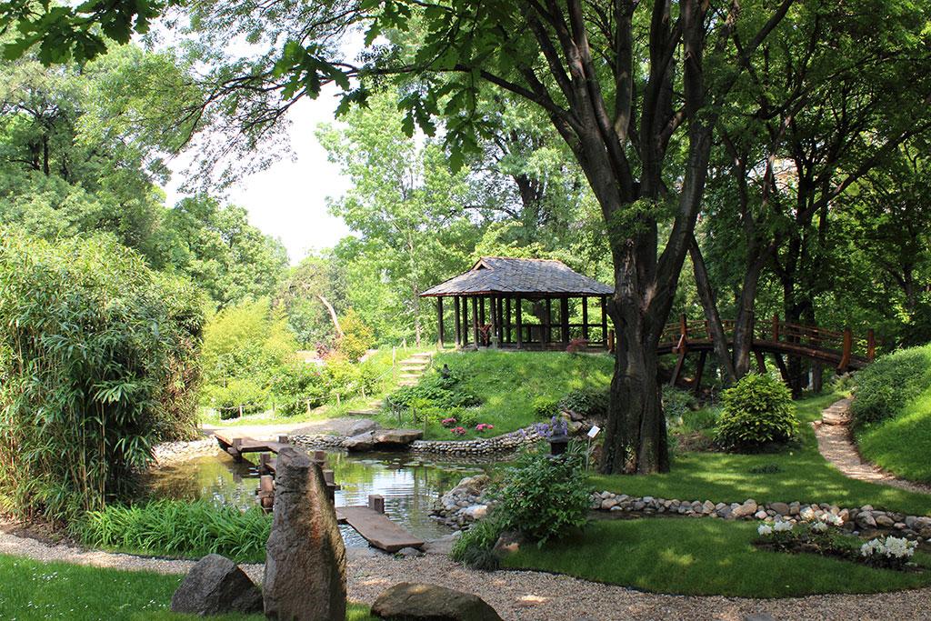 Botanička bašta Jevremovac